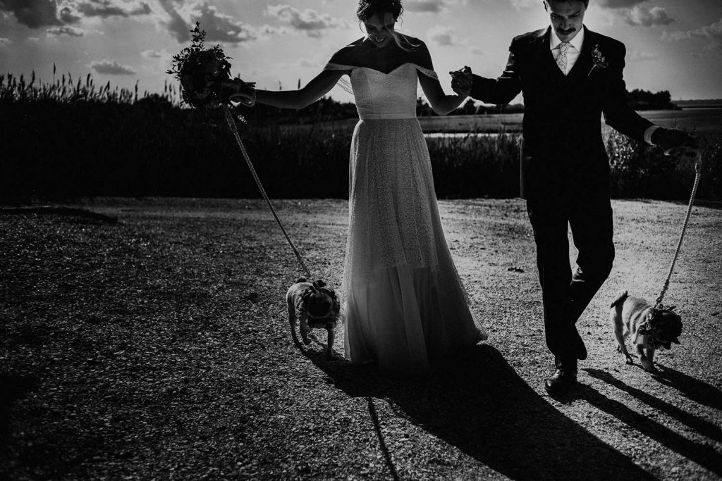 bride and groom walk with dogs outside of wedding venue in long beach island